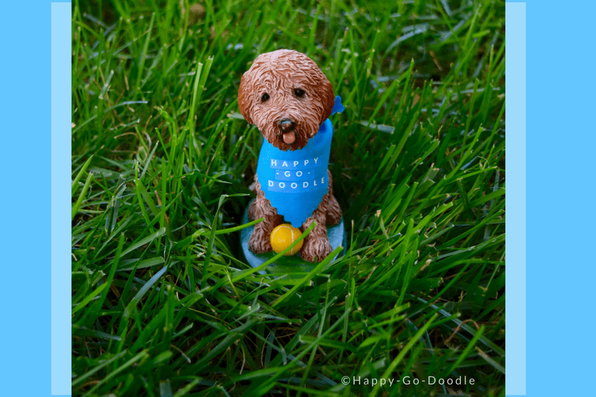 Goldendoodle bobblehead with blue dog bandana and logo Happy-Go-Doodle sitting in green grass