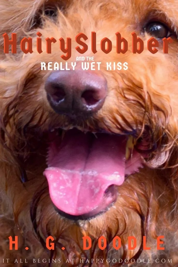 If dogs were the main character in every story, Happy-Go-Doodle Chloe would be Hairy Slobber in Hairy Slobber and the Really Wet Kiss by H. G. Doodle with photo of goldendoodle dog's face with slobbery tongue and title as a book parody