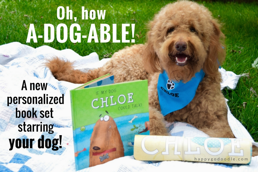 Red goldendoodle dog wearing blue personalized dog bandana and lying on green grass with I See Me personalized dog book titled If My Dog Could Talk and dog placemat with dog's name and title Oh, how a dog able and subtitle A new personalized book set starring your dog