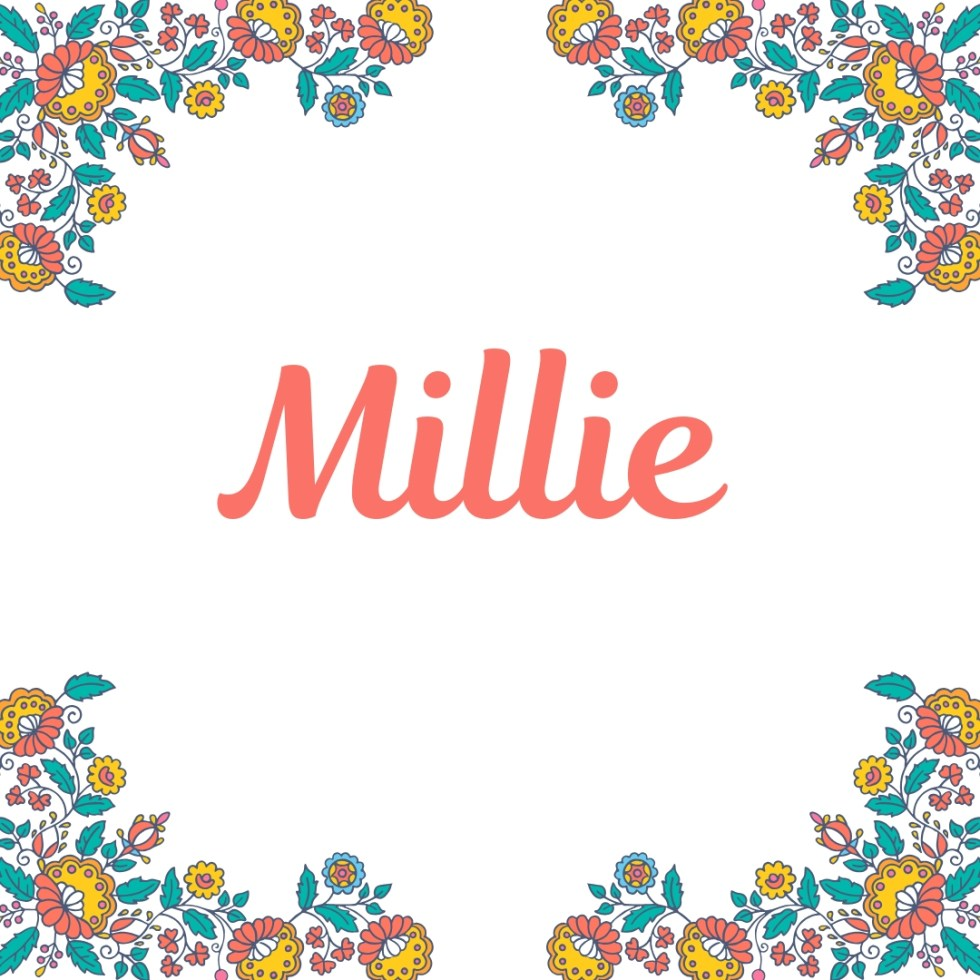Millie written in old fashioned type as name for dog