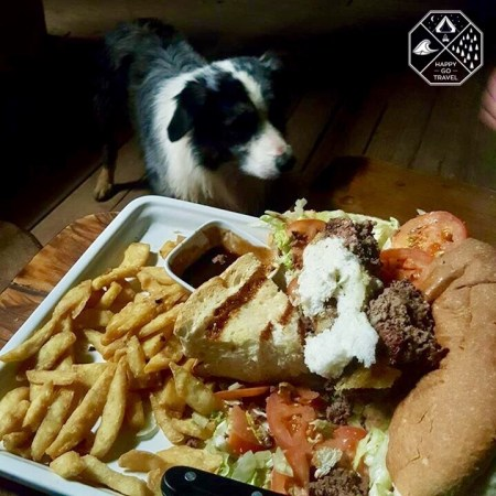 feeding pub dog the Road train burger at the iconic Nindigully pub | pub food | man vs food