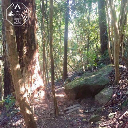 Hiking | Explore | Gap Creek Falls, Watagans National Park NSW