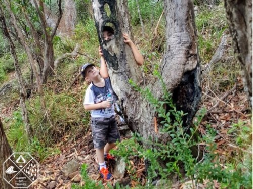 kids having fun while hiking to the summit of Mount Tomaree, Port Stephens NSW