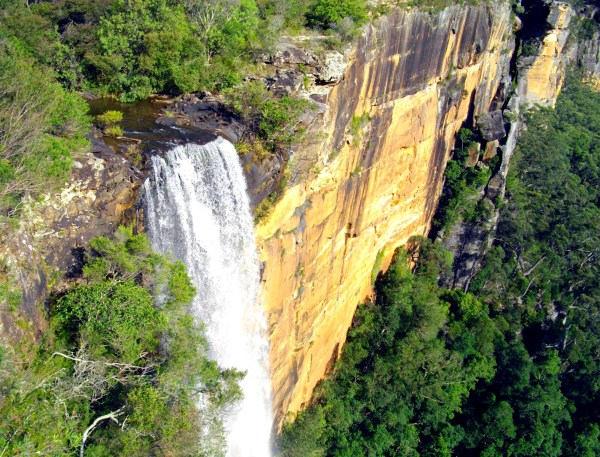 Things To Do Between Sydney and Melbourne | Fitzroy Falls, Moreton National Park