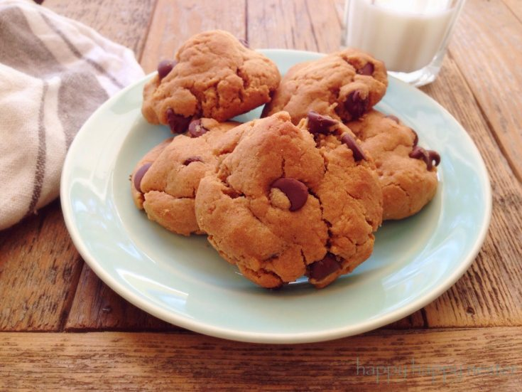 The Best Gluten Free Peanut Butter Chocolate Chip Recipe! Here are 10 Comfort Food Cookies that are family favorites. There is such a wide variety of cookies that I'm sure you'll enjoy some of them. If you like chocolate chip, peanut butter, molasses, almond and biscotti than you'll love this collection. #cookies #bestcookies #baking #recipes #cookierecipes #chocolatechip