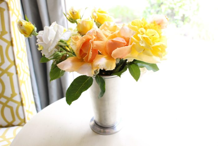 boll and branch roses
