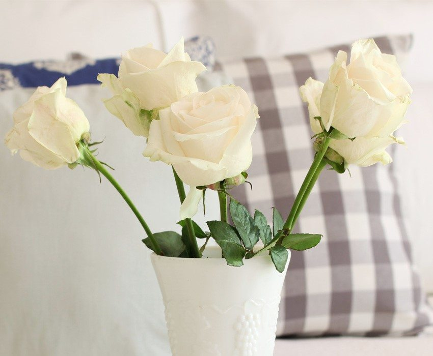 linens-hallstrom-giveaway-roses-smver