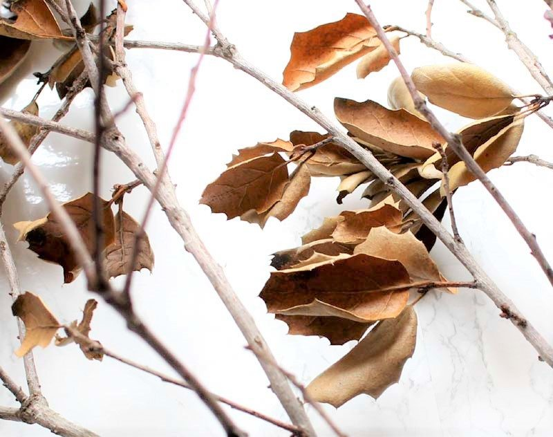 Use real branches to create faux flowers