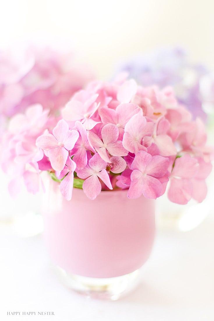 pink hydrangea in pink vase