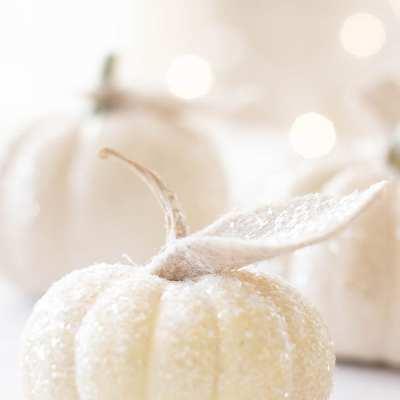 How to Make Glitter Pumpkins