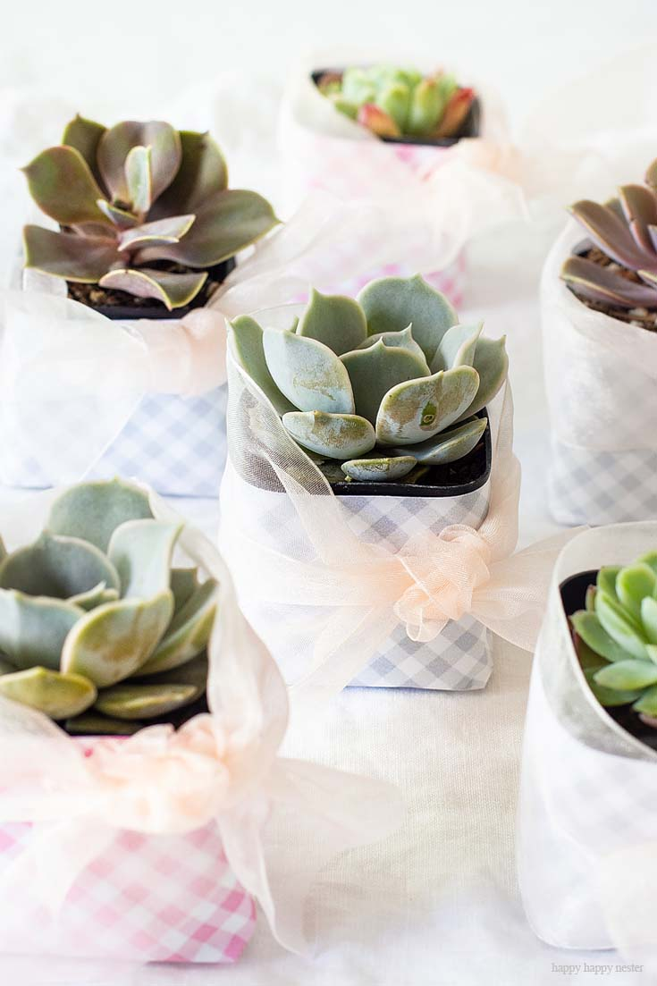 This cute DIY Succulent Wedding Favors project is so adorable and easy peasy. These decorated succulents make great wedding or a hostess gift this is the perfect project for you. #wedding #weddingfavors #crafts #papercrafts #scrapbooking #weddingreceptions #succulents