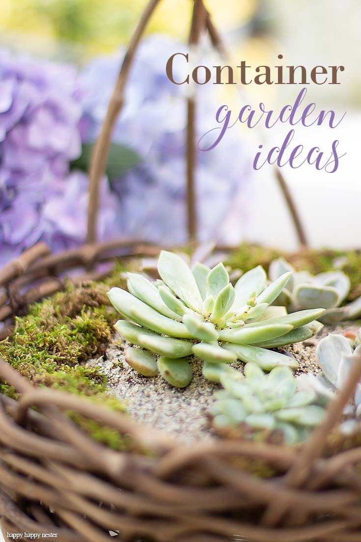 Check out my Container Gardening Ideas for your summer planning. It's not too late to get your flower pots started for summer. This post is a great source of garden containers and what to plant for summer sun and shade. Six bloggers collaborated on this blog roundup. #gardening #flowers #garden