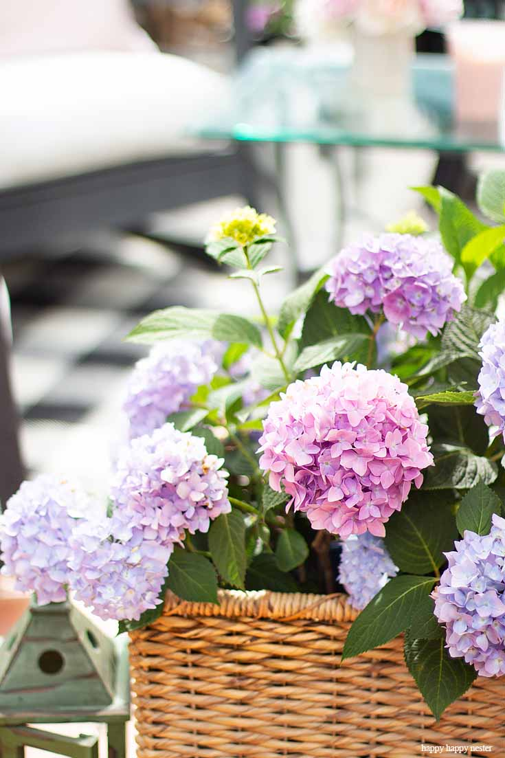 Learn Learn How to Create a Cozy Outdoor Living Space in 9 easy tips. This DIY to summer decorating is essential. #summerdecor #outdoorlivingspaces #entertaining