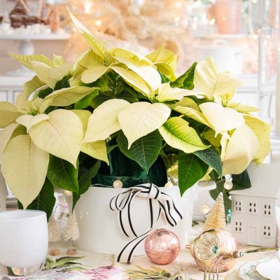 Table Ideas For Christmas Decorating