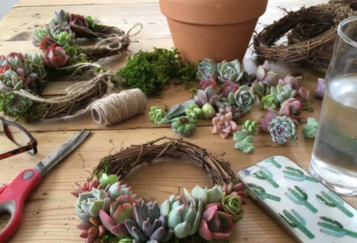 succulent decor workshop