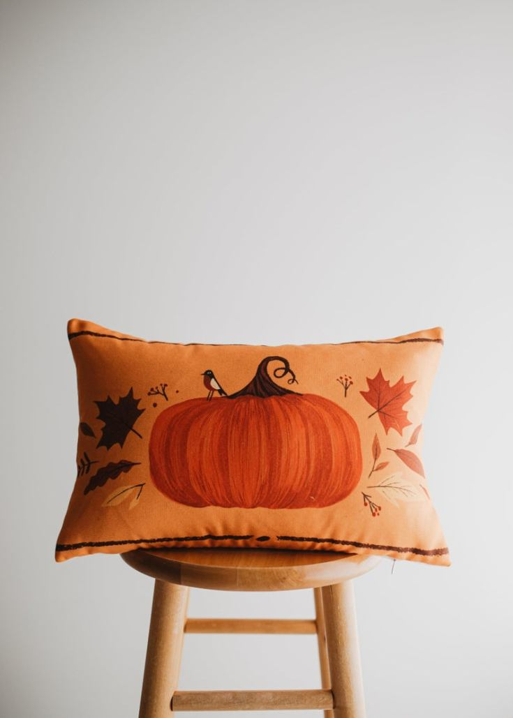 29 favorite fall throw pillows