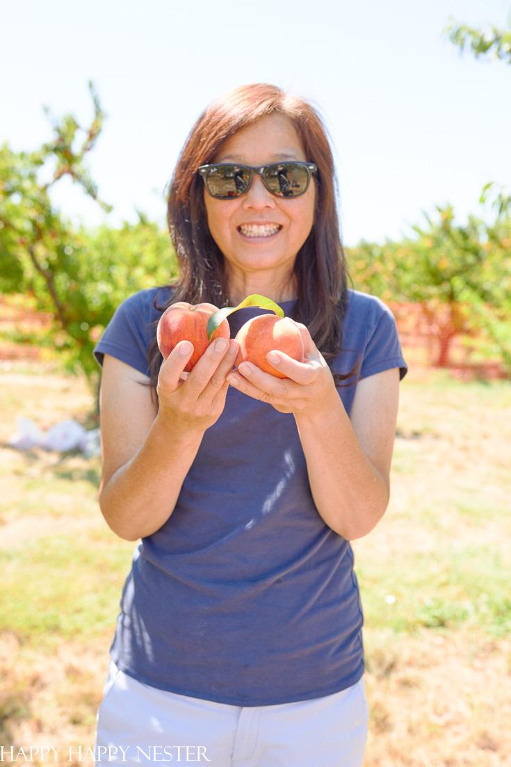 peach cobbler with fresh peaches