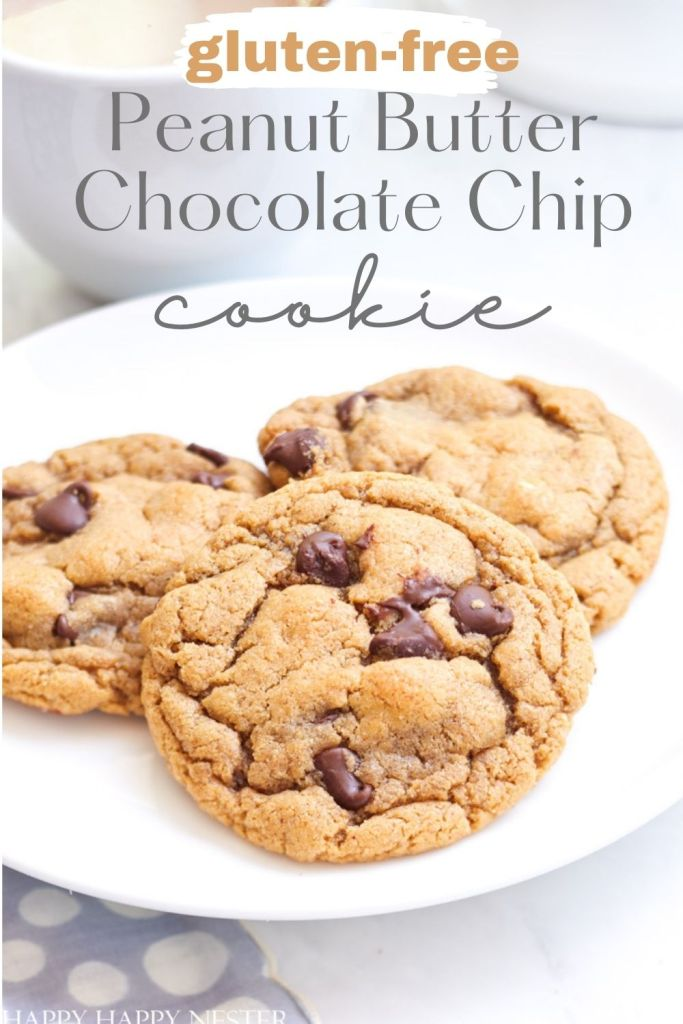 gluten free peanut butter chocolate chip cookie pin