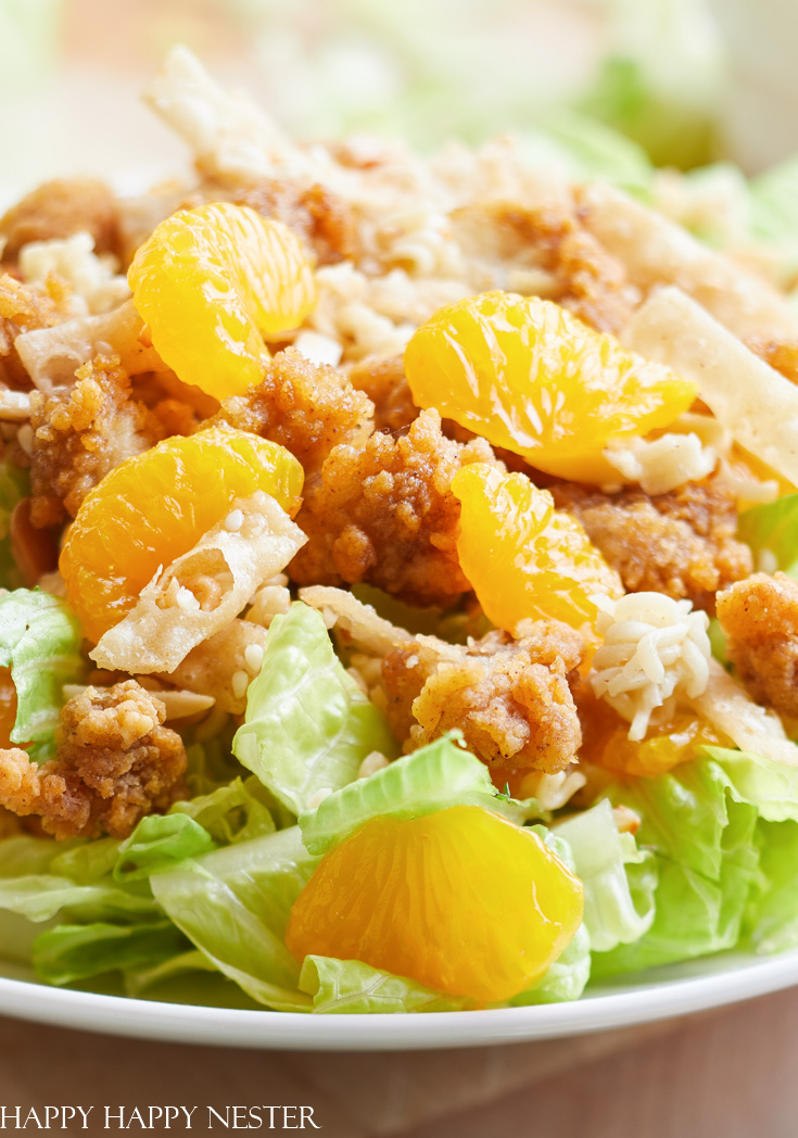 ramen noodle salad with Mandarin oranges