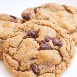gluten free peanut butter chocolate chip cookie