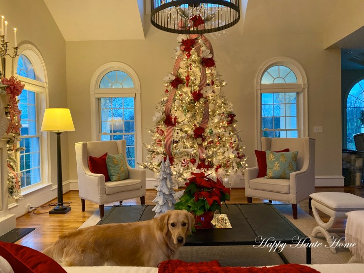 Christmas Sunroom 2019-10