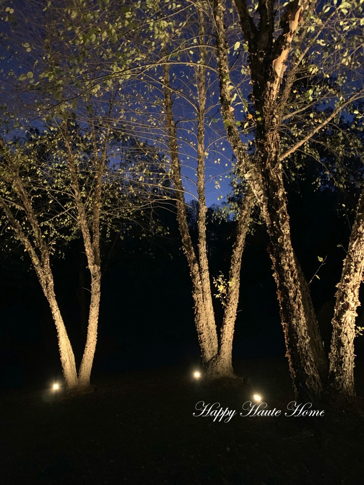 Outdoor Lighting-18