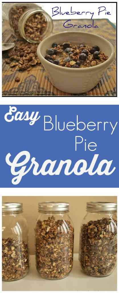 This is blueberry pie in the form of healthy, low-sugar granola! Such an easy, healthy, and delicious breakfast idea! This one will make its way into your regular recipe rotation!