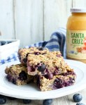 Organic Blueberry Banana Oat Bars Recipe--made with Santa Cruz Organic Cinnamon Apple Sauce