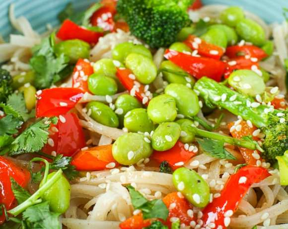 a close up picture of the Vegan Asian Noodle Bowl with broccoli, red bell peppers, edamame, and brown rice noodles