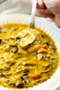 a spoonful of Vegan Mushroom Wild Rice Soup