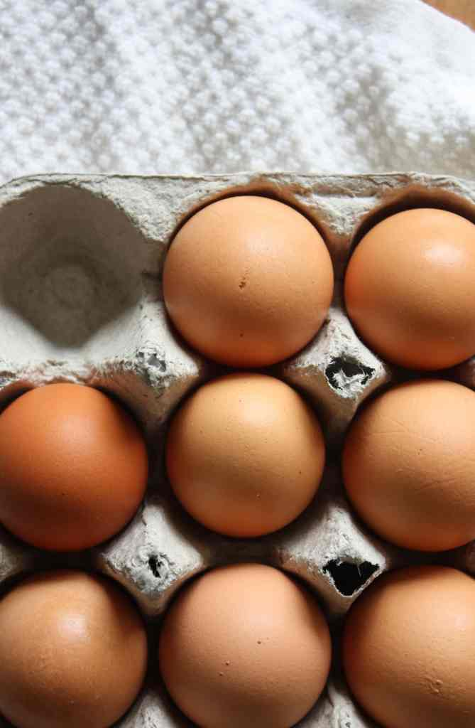 brown eggs in a cardboard carton with a white towel underneath