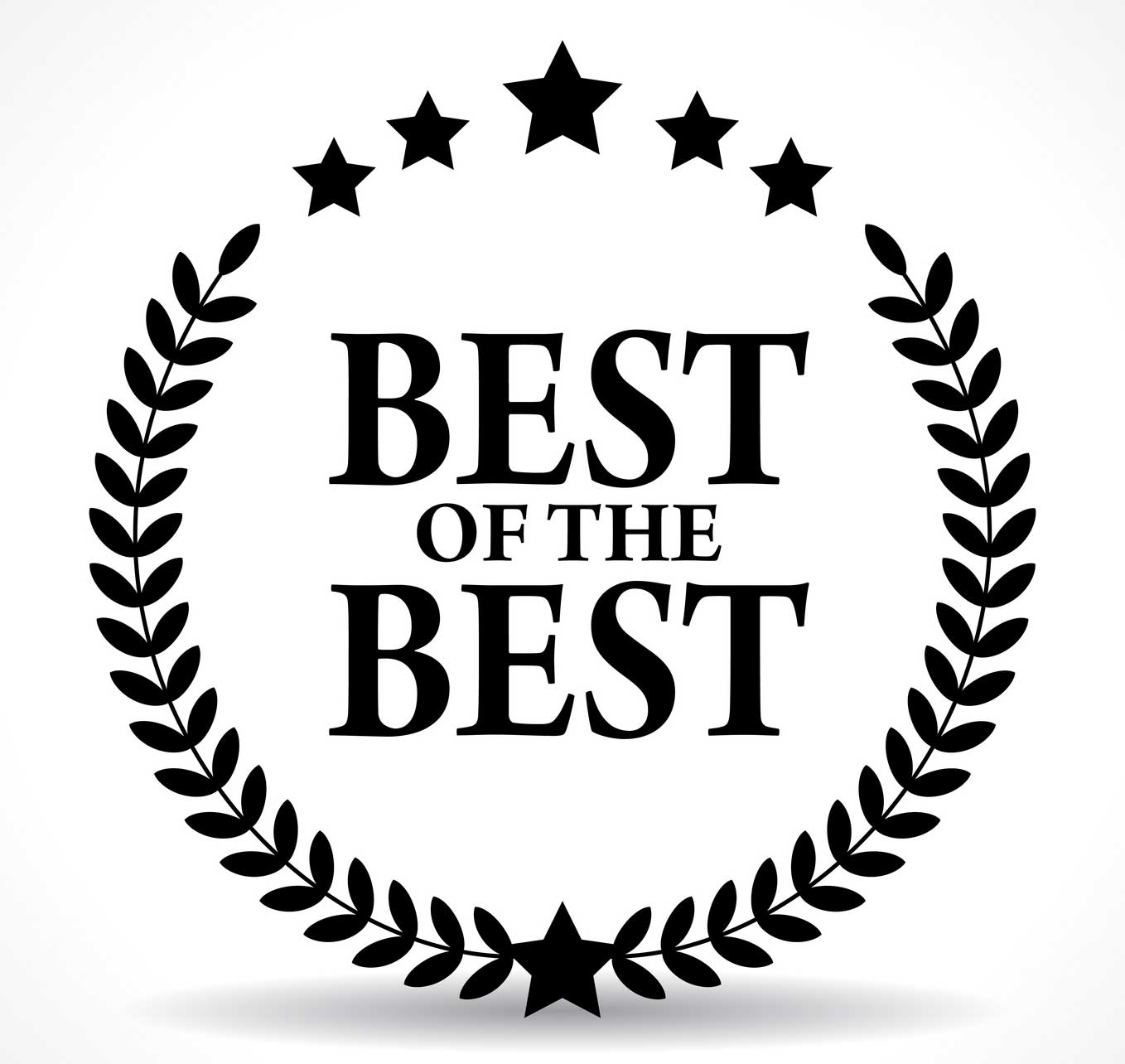 The Best of the Best Air Fryer