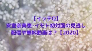 【イッテQ】安室奈美恵・イモト初対面の見逃し配信や無料動画は?【2020】