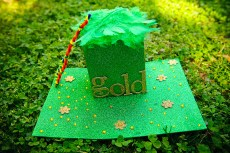 Leprechaun Trap Inspirations