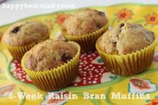 6-Week Raisin Bran Muffins and the Big Brown Bowl