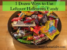 Leftover Halloween Candy – How to Avoid the Candy Coma