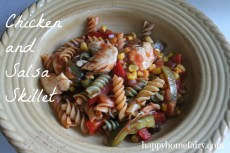 Recipe – Chicken and Salsa Skillet