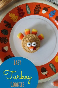 Easy Turkey Cookies