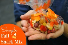 Simple Fall Snack Mix – Only 3 Ingredients!