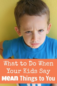 What to Do When Your Kids Say Mean Things to You