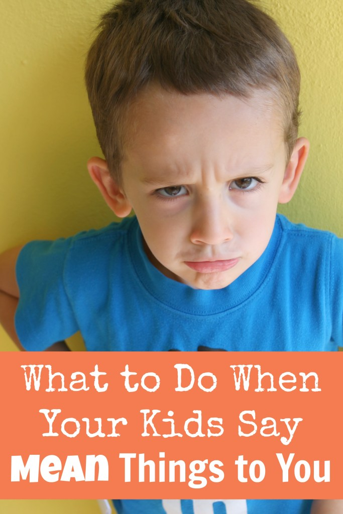What to Do When Your Kids Say Mean Things to You at happyhomefairy.com