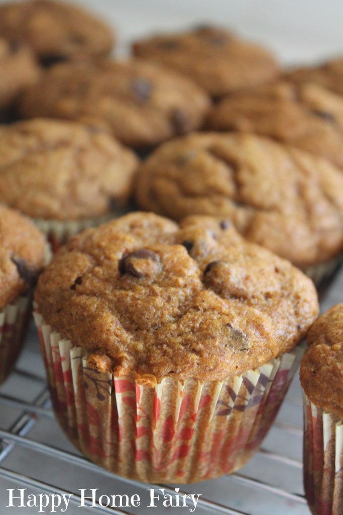 chocolate-chip-pumpkin-muffins-so-yummy