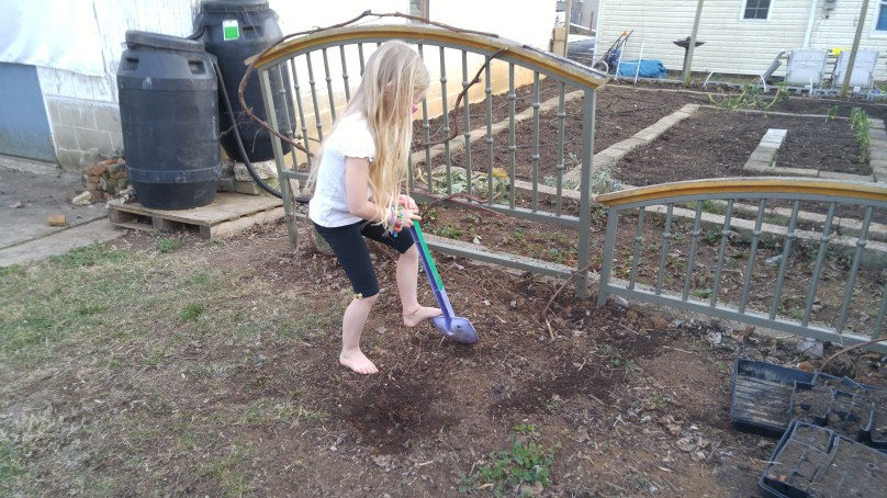 Rosie said she wanted to dig for treasure.