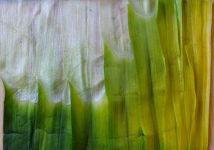 Листья лука-порея