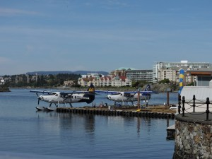 Seaplanes at the busy Inner Harbour seaplane airport