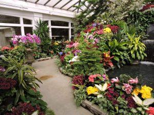 Greenhouse at The Buchart Gardens
