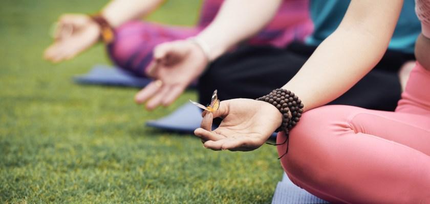 ENDLICH WIEDER Sommer-Yoga im Park
