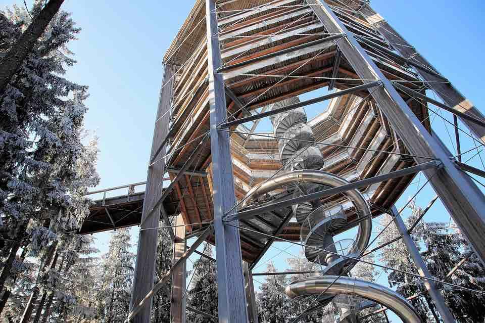 Stezka korunami stromů: 5 stezek, které navštívit