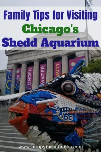 Tips for a Day at the Shedd Aquarium Chicago with Kids. Things to do, where to eat, park, and free days. Families will love visiting Dolphins, Beluga Whales, Penguins and fish. #sheddaquarium, #chicagoattractions, #traveltips,