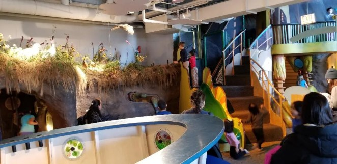 Best Tips Peggy Notebaert Nature Museum. Chicago Musuem for kids with unforgettable Butterly exhibit, reptiles, playareas and more. Learn where to park, eat and things to do for a great Family day out. #notebaert, #chicago, #traveltips, #familytravel